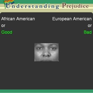 African American-European American Iat Essay