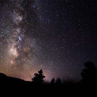 stardust_crop